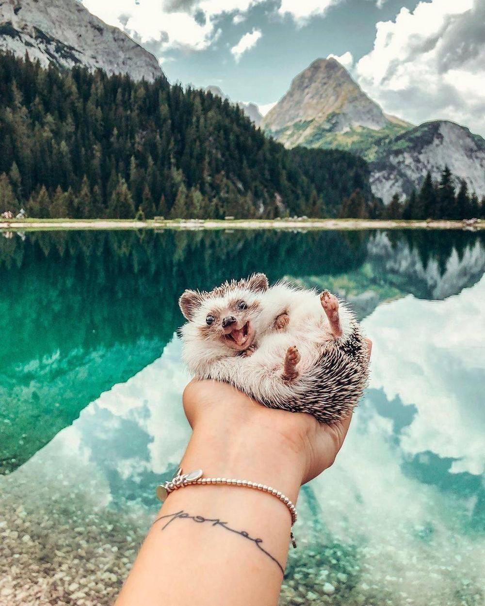 Позитивные фотографии, которые говорят больше чем слова!