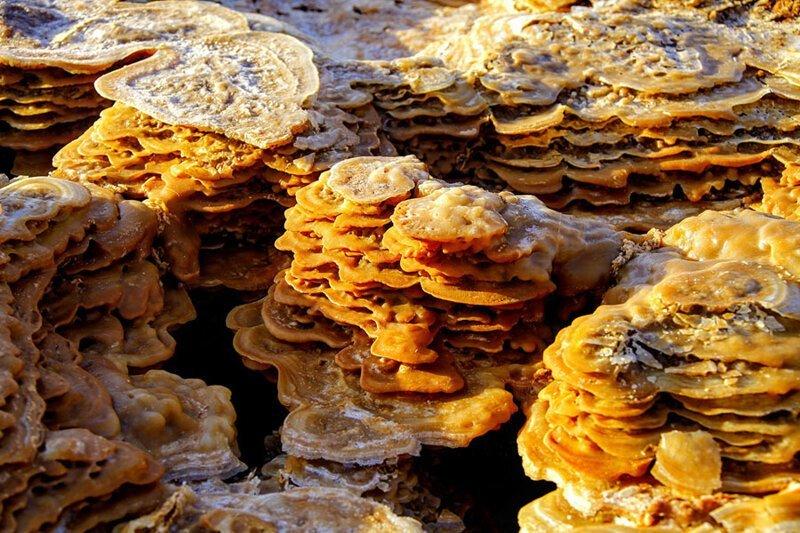 Грибообразные минеральные отложения. Фото: Танги Сен-Сира (Tanguy de Saint-Cyr: Shutterstock) безжизненное место, вулканы, интересное, фотографии