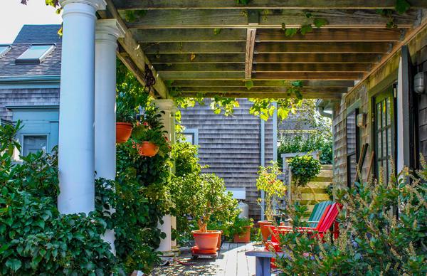 Для оформления пристраиваемых конструкций пригоден весь арсенал вертикального озеленения