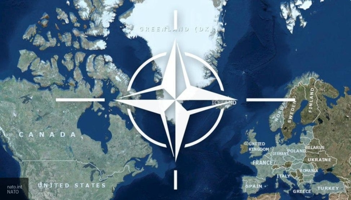Турция в рамках НАТО ведет особую политику геополитика
