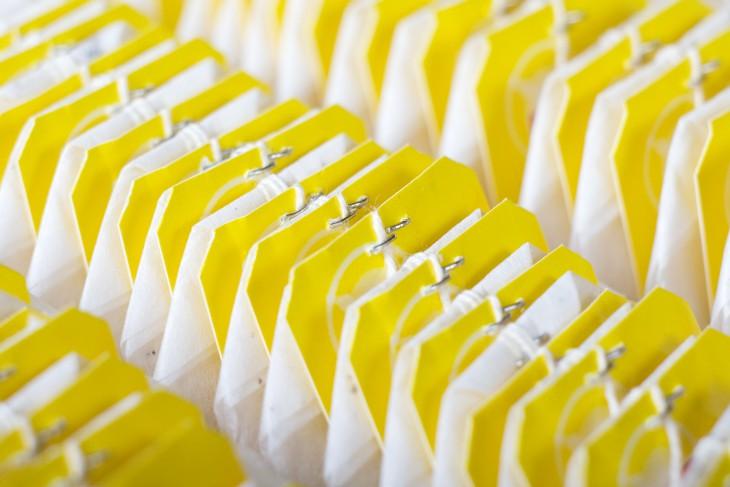 6 фактов о чайных пакетиках, узнав которые вы перестанете выбрасывать их после использования