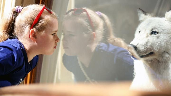 Нельзя молчать: Русские дети в руках иностранцев