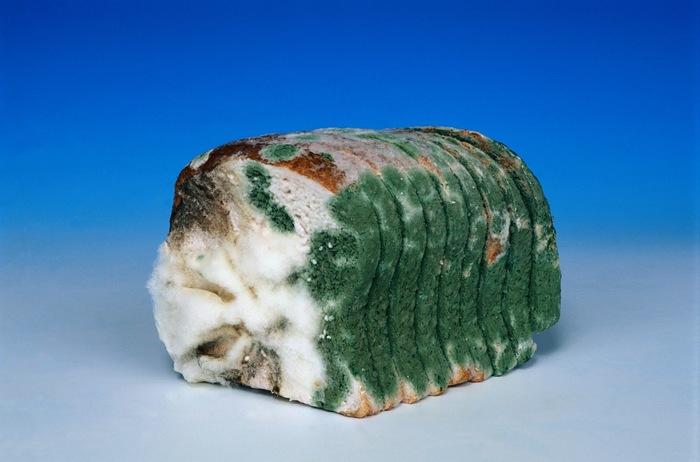 Что будет, если есть хлеб с …