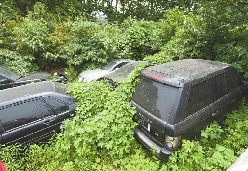 Жители Европы бросают свои машины в полях навсегда авто и мото,новости автомира