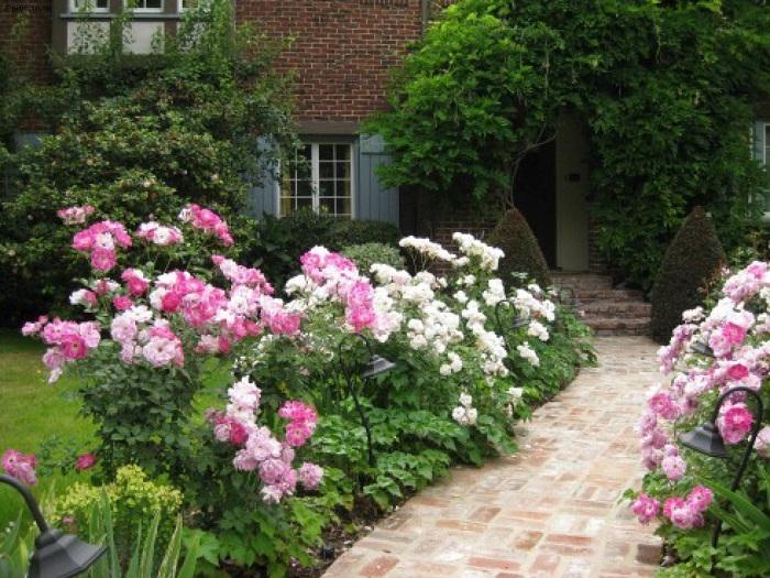 15 вдохновляющих идей клумб и цветников