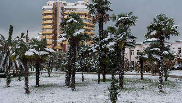 Сочи завалило снегом : Службы переведены в режим повышенной готовности