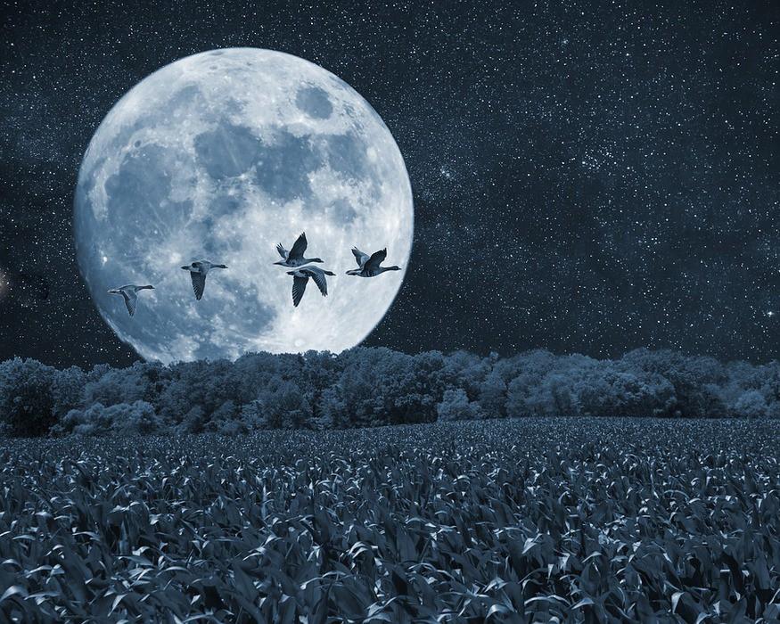 Астрономы: древняя Луна имел…