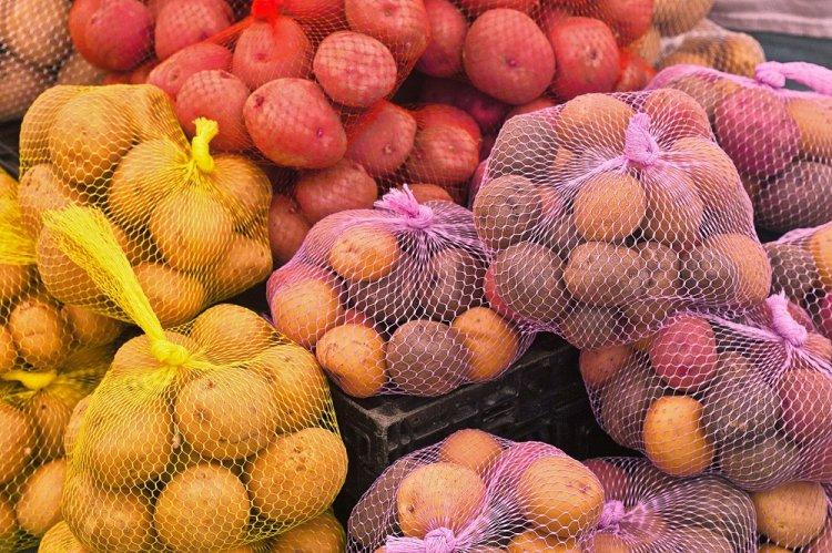 Учёные назвали картошку и ры…