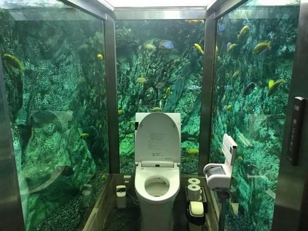 Владелец кафе в Японии превратил стены женского туалета в большой аквариум интерьер и дизайн,Япония