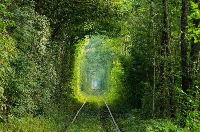 Тоннель любви в Украине.