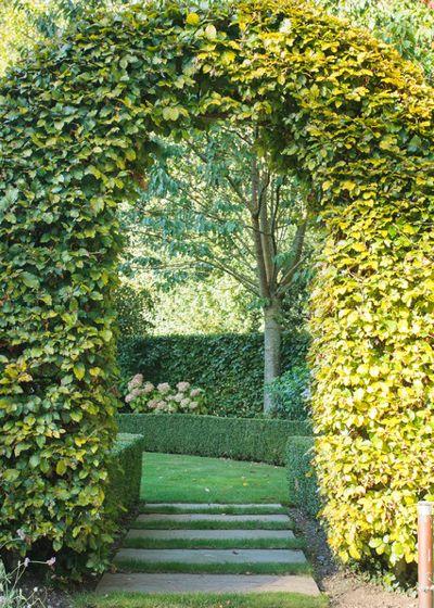 Классический Сад by Barnes Walker Ltd - Landscape Architects