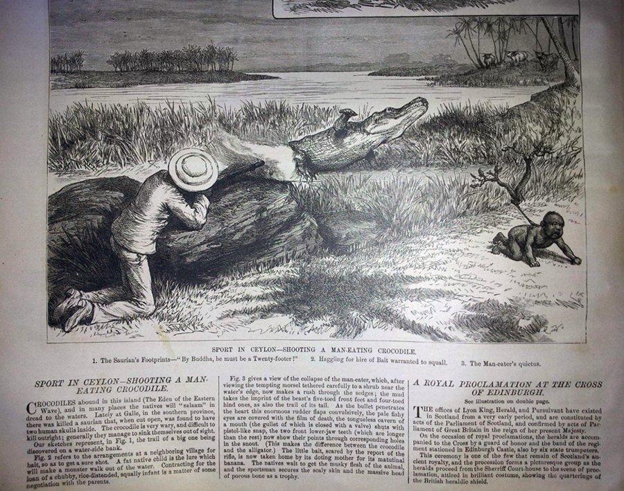 Британская охота на крокодилов