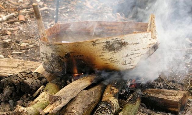 6 ценных способов использования древесной коры советы