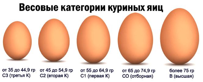 какой сорт яйца лучше