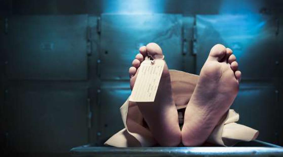 8 теорий ученых, которые пытаются разгадать природу смерти бессмертие,биология,жизнь,медицина,наука,Пространство,психология,религия,смерть