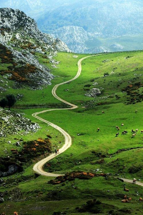 Пусть у вас будет как можно больше дорог, которые вы выберете сами дороги, какой большой мир, красота, умиротворение, фотомир