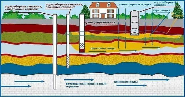 Как найти исток воды на своём участке