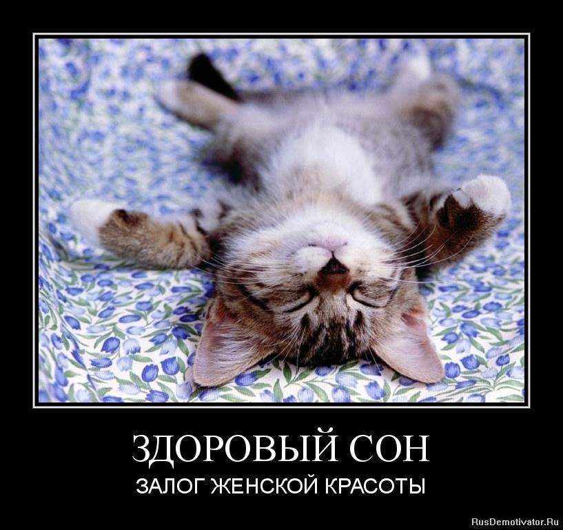 Картинки про сон с надписями смешные