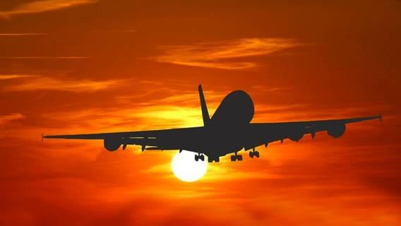 Более 40 стран перекрыли авиационное сообщение с Великобританией из-за нового вида коронавируса ИноСМИ