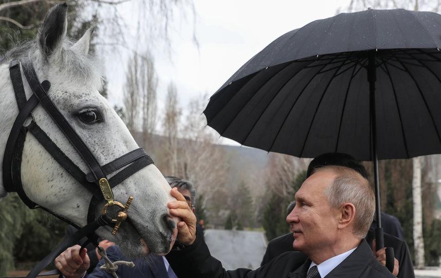 Александр Росляков. Путин – наш гужевой!