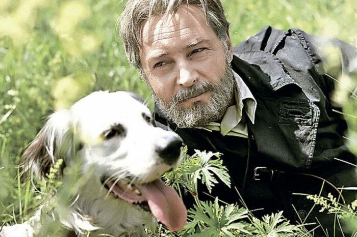 Белый Бим – сеттер Стив животные, кино, это интересно
