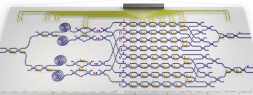 Структура квантового процессора