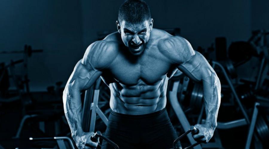 Самые полезные упражнения для тела