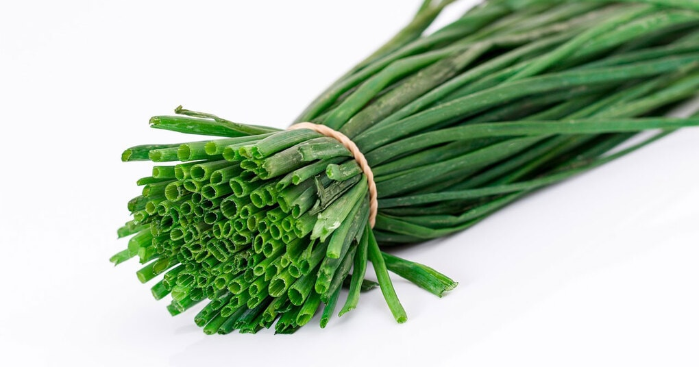 Супер способ выращивания зеленого лука в пакете без земли