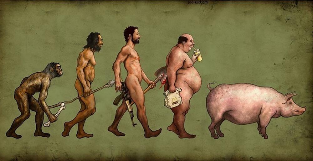 Эволюция интересные картинки