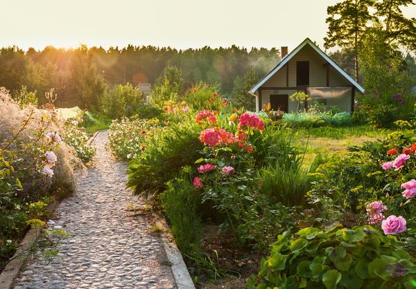 Большинство садоводов предпочитают идти прямой дорожкой