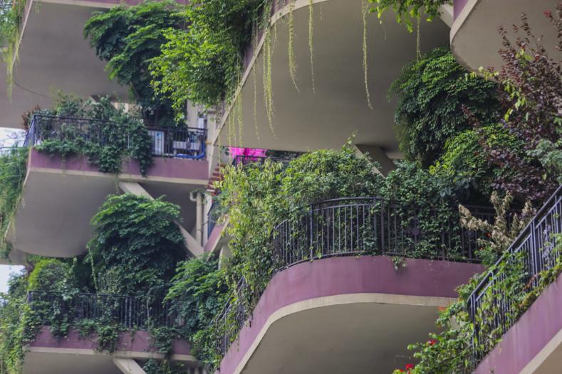Фото пустующих башен-джунглей, где живут всего 10 семей: выглядит это как декорации к фильму-катастрофе архитектура,где и как,жилье,кто