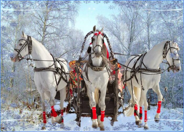 Лихая тройка: почему запряженные лошади смотрят в разные стороны, но мчат очень быстро авто,автомобиль