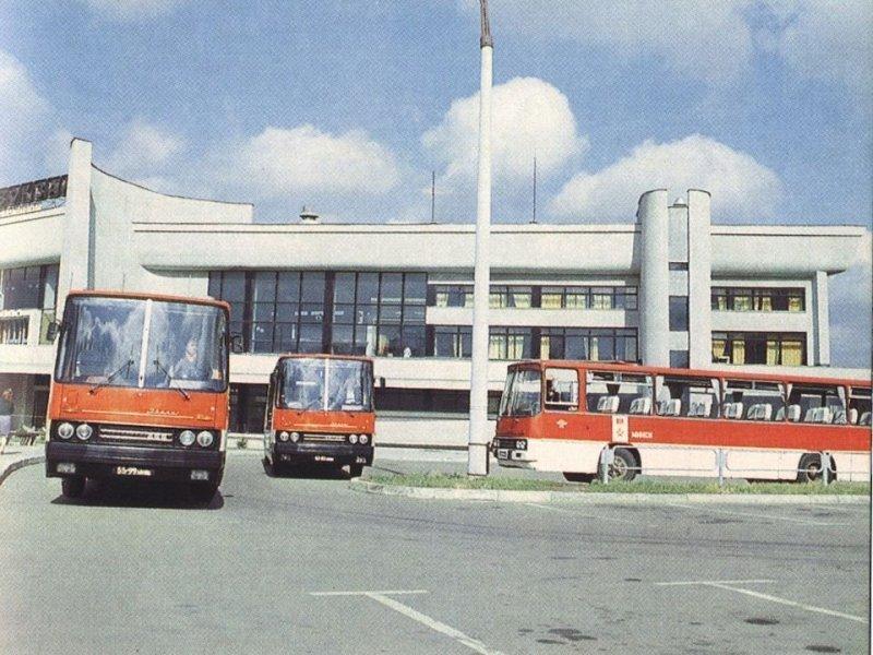"""Легендарные автобусы """"Икарус"""" на восточном автовокзале в Минске. ЛАЗ, СССР, авто, автобус, автомобили, зил, лиаз, советский автопром"""