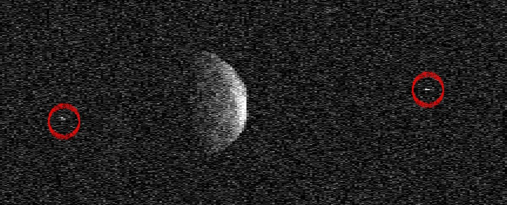 Два спутника астероида «Флоренция»
