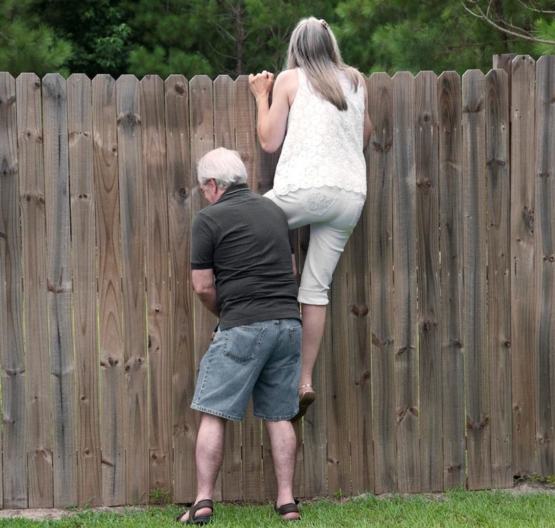 Соседи заглядывают через забор