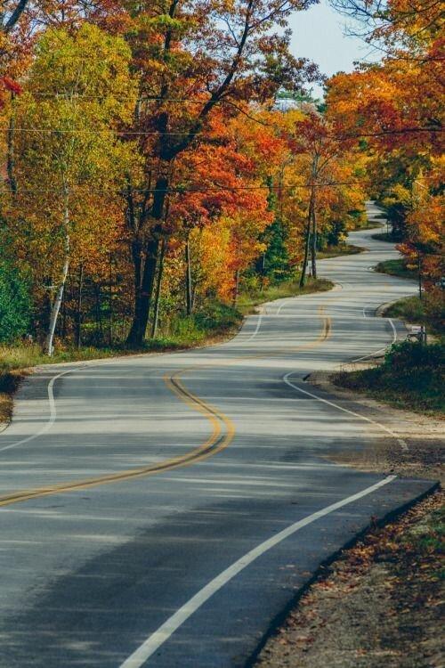 Представить, что эта дорогая - твоя жизнь, и были на ней резкие повороты и препятствия дороги, какой большой мир, красота, умиротворение, фотомир