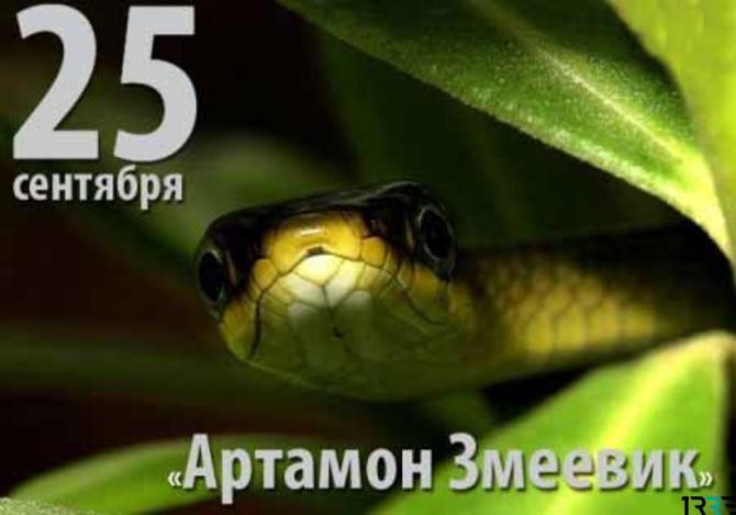 Картинка артамон змеевик