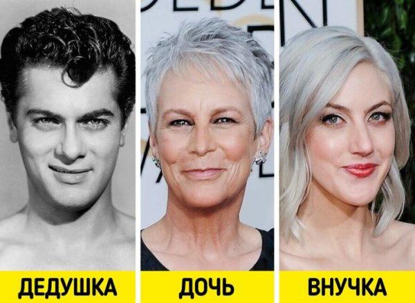 Киноактеры, которые были красавцами – переняли ли красоту их потомство? актеры и актрисы,знаменитости,красота