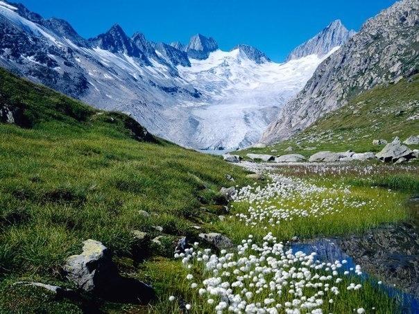 12 интересных фактов о Швейцарии