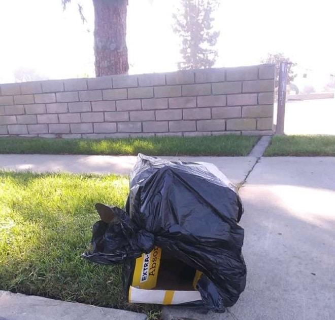 «Живой» пакет»: кто-то выбросил коробку с пакетом, а внутри бился щенок! Вскоре стало ясно, почему