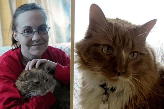 Коты, которые спасли жизнь с…