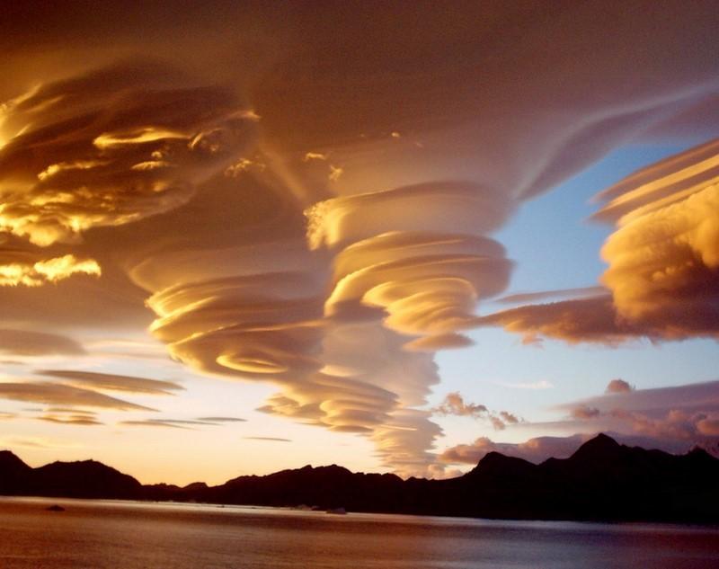 Природа всегда найдет, чем удивить интересное,природа,фотографии