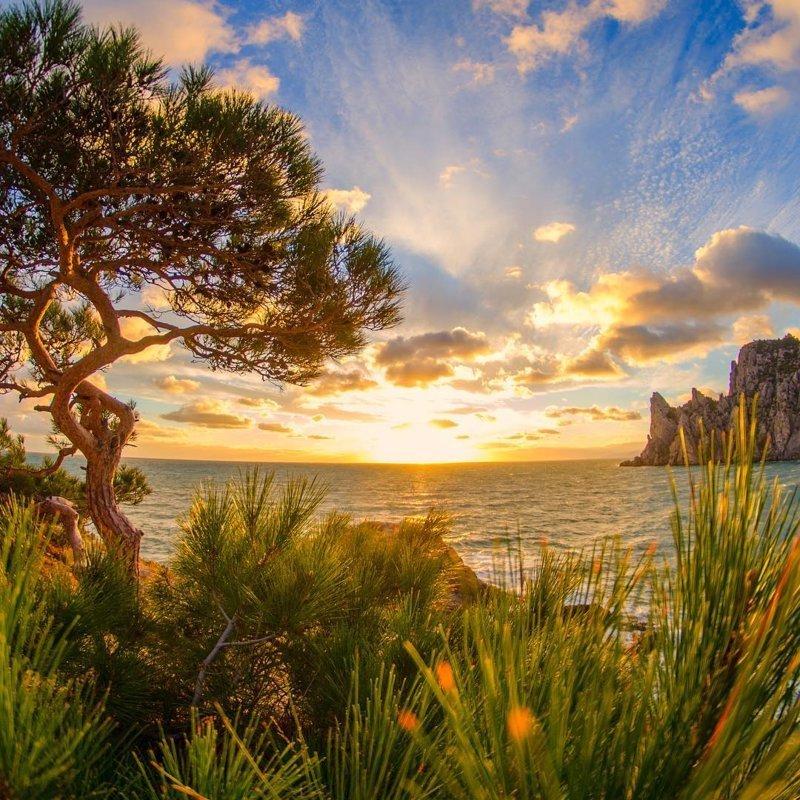 Черноморский закат, Крым горы, леса, природа, природа России, российская природа, россия