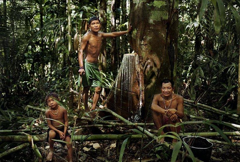 Джунгли дикие люди смотреть, рыжая раком в трусиках