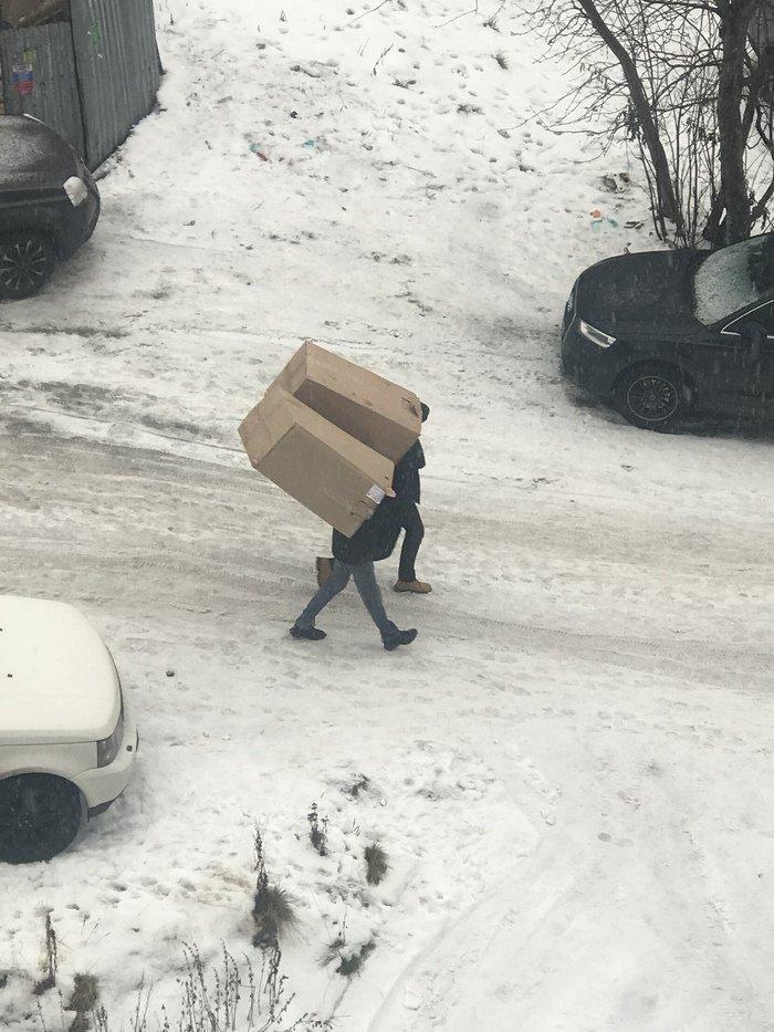 Просто муромчане гуляют с картонными коробками Города России, Кольский полуостров, мурманск, прикол, север, юмор