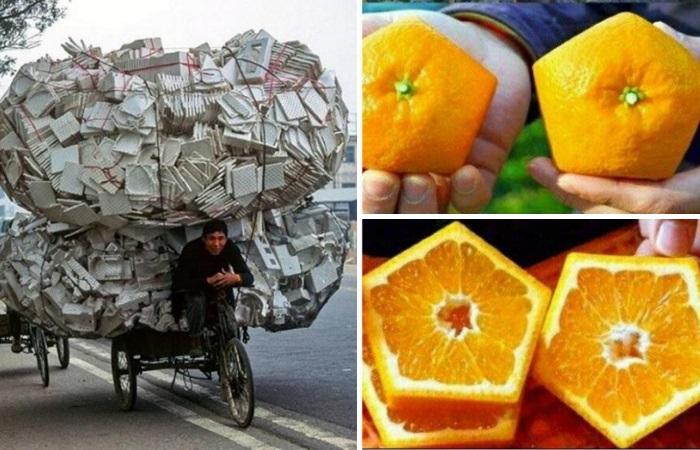 17 обыденных азиатских вещей, которые кажутся безумными европейцам