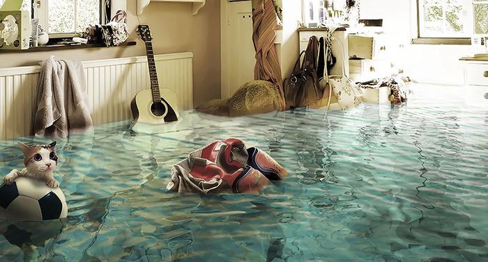 Как подготовиться к затоплен…
