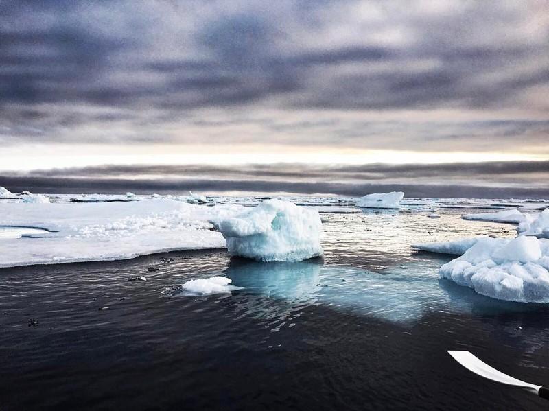 нужное северный ледовитый океан картинки морской