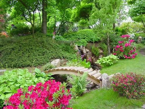 Десять новшеств в садоводстве, которые упростят вашу жизнь и украсят участок