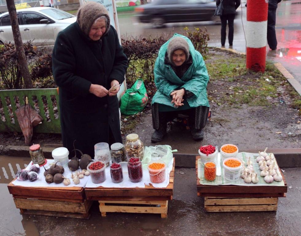 Налог на грибы и ягоды – это изумительная идея Государственной думы
